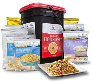 Wise Company Emergency Food Preparedness Kit