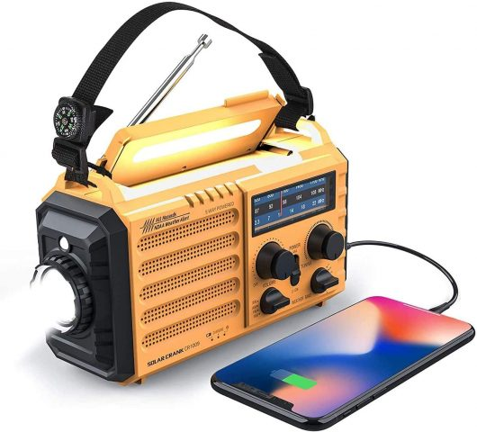 Raynic Store Weather Radio